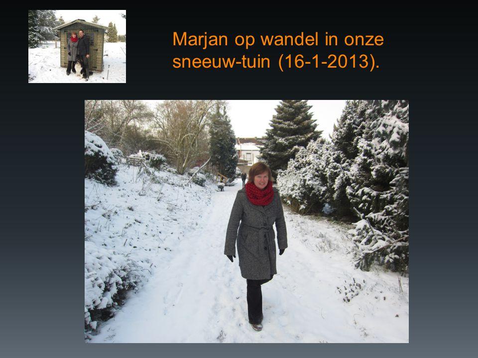 Marjan op wandel in onze sneeuw-tuin (16-1-2013).