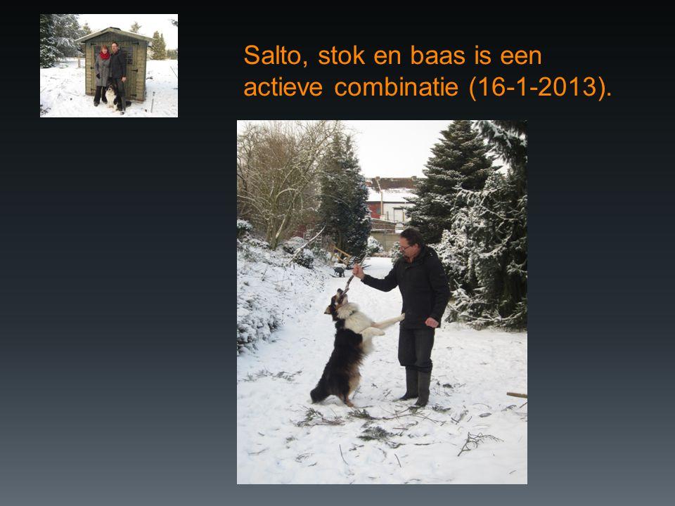 Salto, stok en baas is een actieve combinatie (16-1-2013).