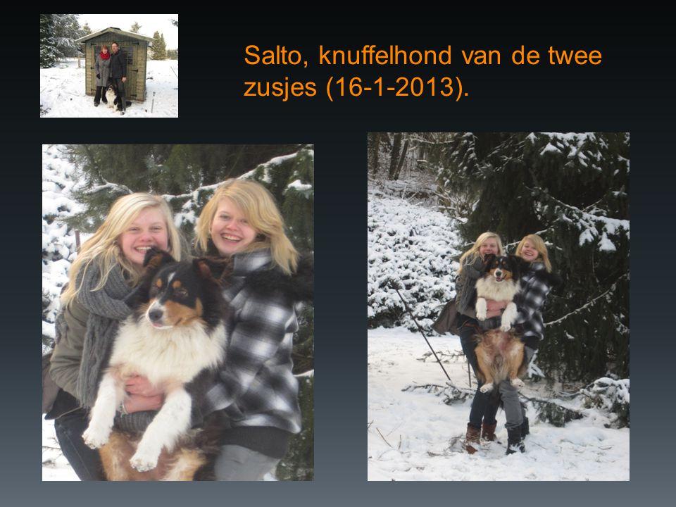 Salto, knuffelhond van de twee zusjes (16-1-2013).
