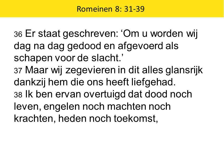 Romeinen 8: 31-39 36 Er staat geschreven: 'Om u worden wij dag na dag gedood en afgevoerd als schapen voor de slacht.' 37 Maar wij zegevieren in dit a