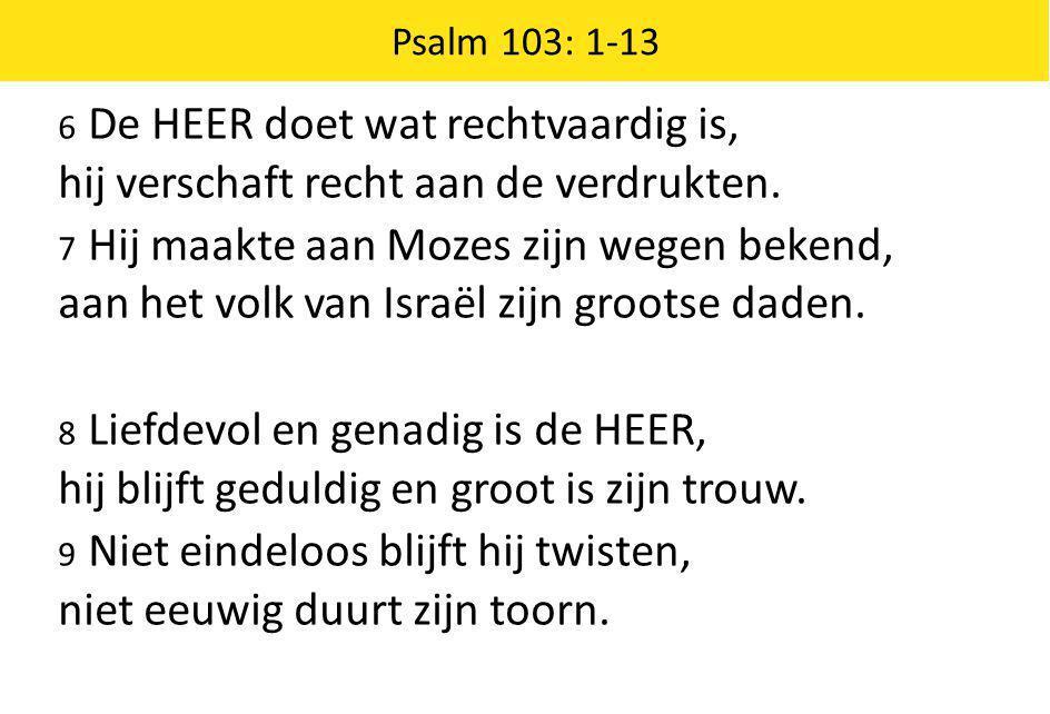 6 De HEER doet wat rechtvaardig is, hij verschaft recht aan de verdrukten. 7 Hij maakte aan Mozes zijn wegen bekend, aan het volk van Israël zijn groo