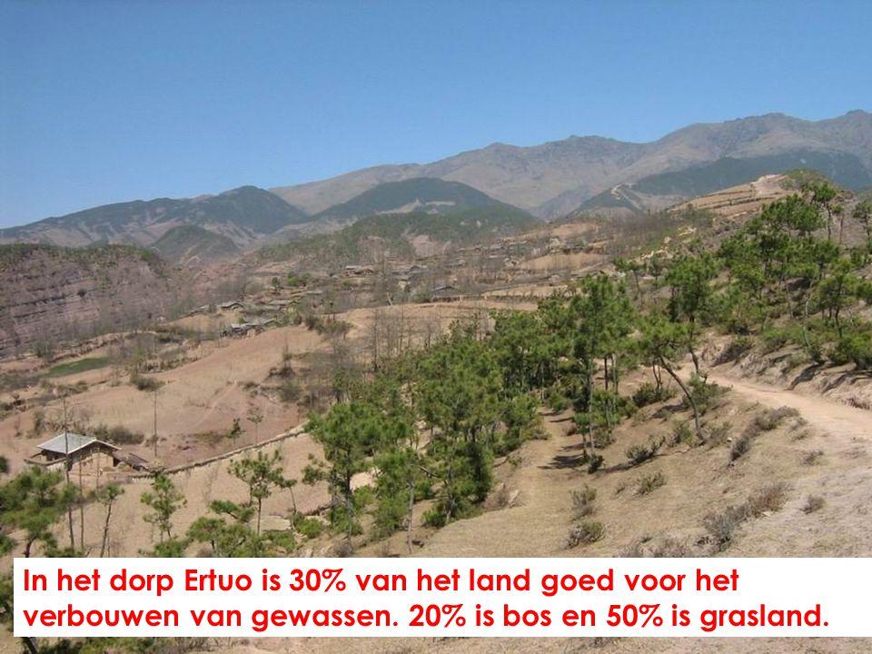 In het dorp Ertuo is 30% van het land goed voor het verbouwen van gewassen.