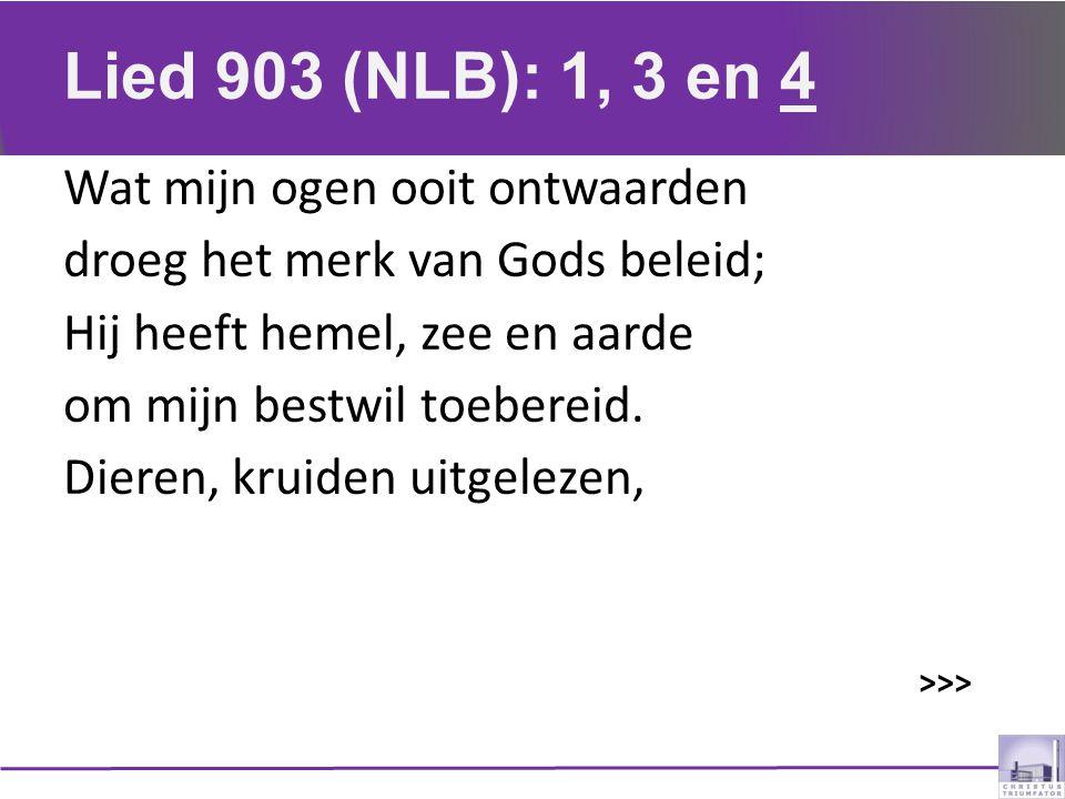 Lied 903 (NLB): 1, 3 en 4 Wat mijn ogen ooit ontwaarden droeg het merk van Gods beleid; Hij heeft hemel, zee en aarde om mijn bestwil toebereid. Diere