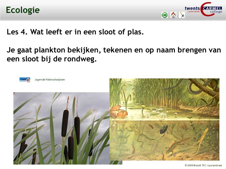 © 2009 Biosoft TCC - Lyceumstraat Ecologie Les 4.Wat leeft er in een sloot of plas.