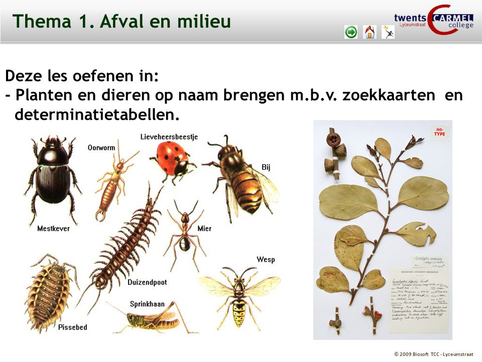 © 2009 Biosoft TCC - Lyceumstraat Thema 1.