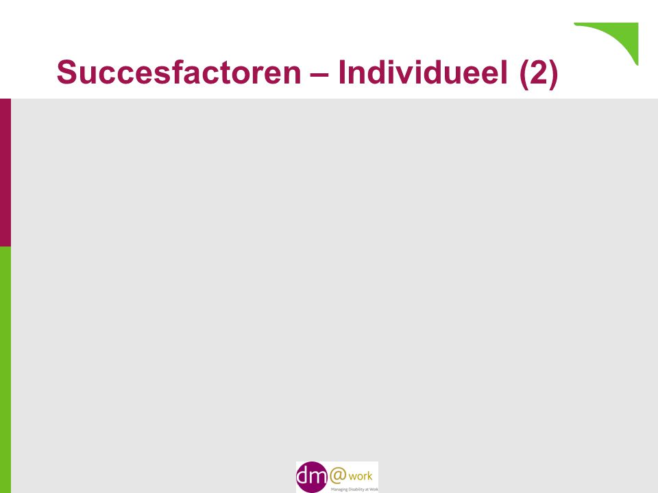 Succesfactoren – Individueel (2)