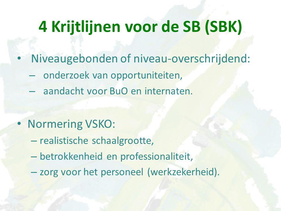 Niveaugebonden of niveau-overschrijdend: – onderzoek van opportuniteiten, – aandacht voor BuO en internaten.