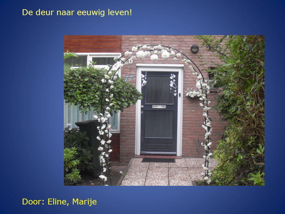 Door: Eline, Marije De deur naar eeuwig leven!