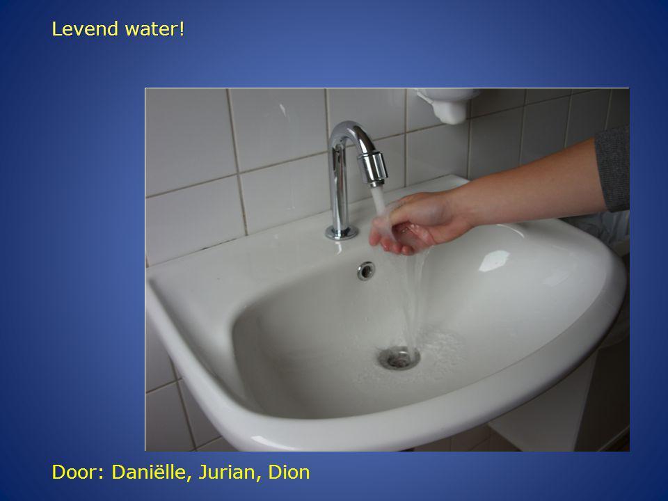 Door: Daniëlle, Jurian, Dion Levend water!