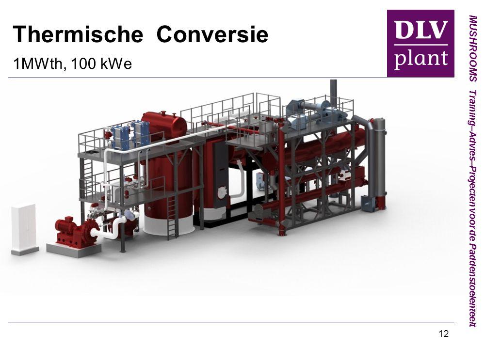 MUSHROOMS Training–Advies–Projecten voor de Paddenstoelenteelt Thermische Conversie 1MWth, 100 kWe 12