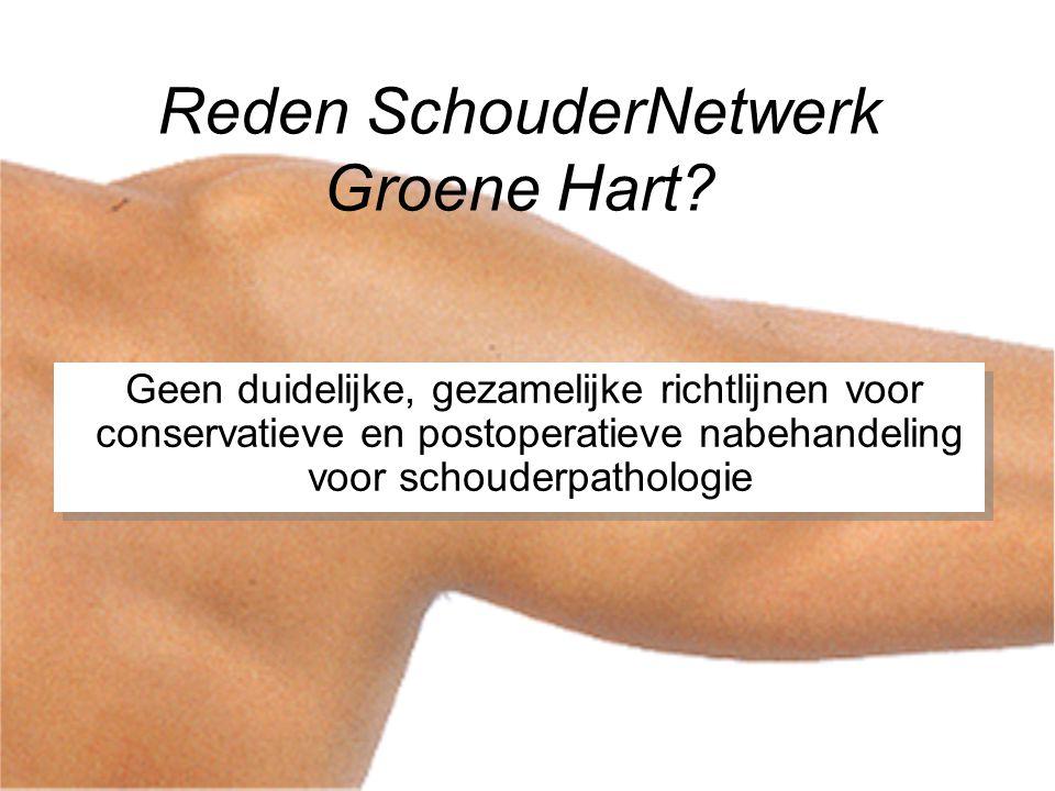 SchouderNetwerk Groene Hart Fysio 'blaast kalk op' in pijn-schouder Uiteenlopende behandelingen voor hetzelfde schouderprobleem Schouder werd goed opgerekt