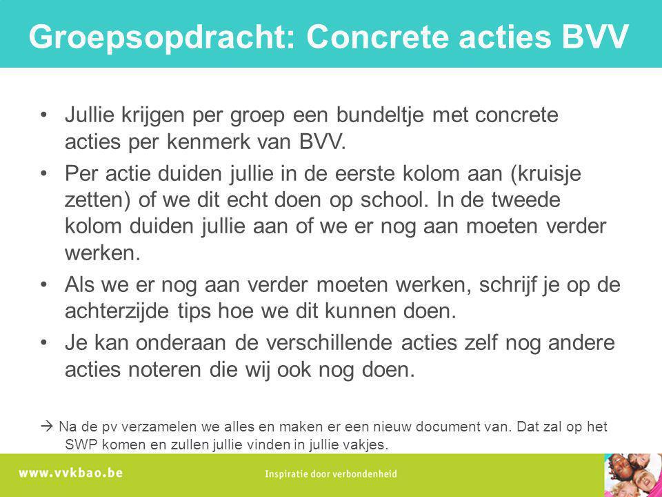 Groepsopdracht: Concrete acties BVV Jullie krijgen per groep een bundeltje met concrete acties per kenmerk van BVV. Per actie duiden jullie in de eers