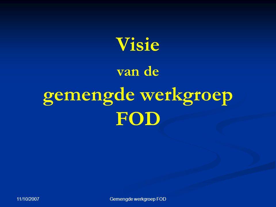 11/10/2007 Gemengde werkgroep FOD Visie van de gemengde werkgroep FOD