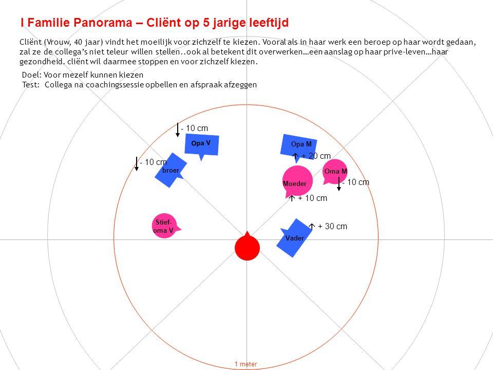 I Familie Panorama – Cliënt op 5 jarige leeftijd Doel: Voor mezelf kunnen kiezen Test: Collega na coachingssessie opbellen en afspraak afzeggen 1 mete