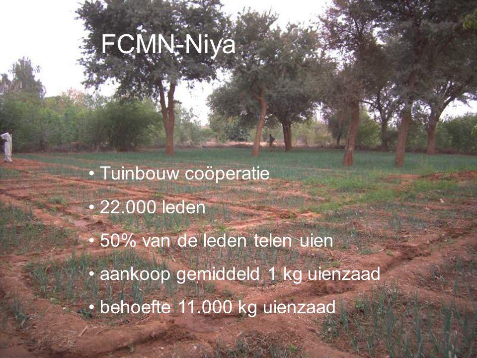 FCMN-Niya Tuinbouw coöperatie 22.000 leden 50% van de leden telen uien aankoop gemiddeld 1 kg uienzaad behoefte 11.000 kg uienzaad