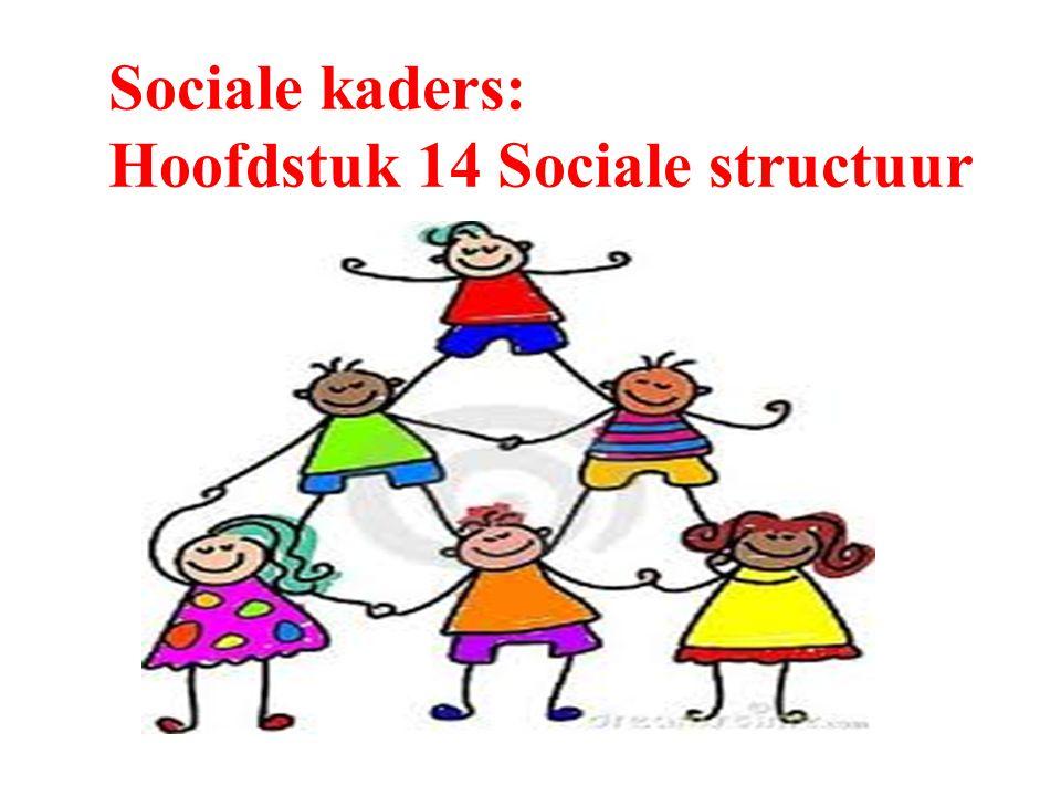 Sociale kaders: Hoofdstuk 14 Sociale structuur