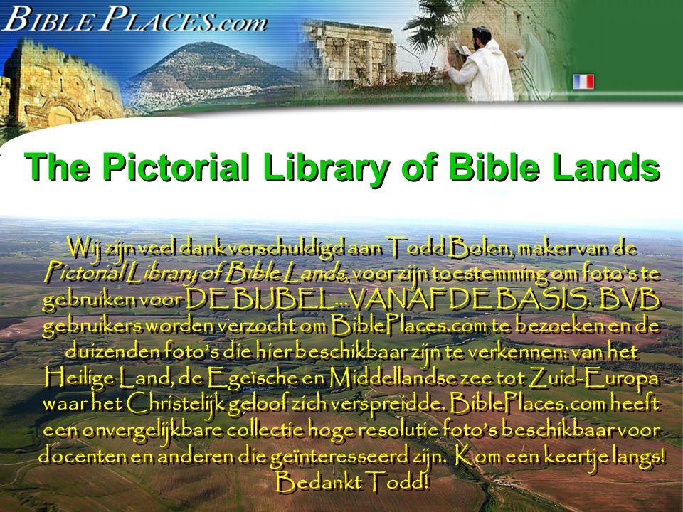 Het The Bible…Basically Project is bedacht, ontwikkeld en geproduceerd door John E.