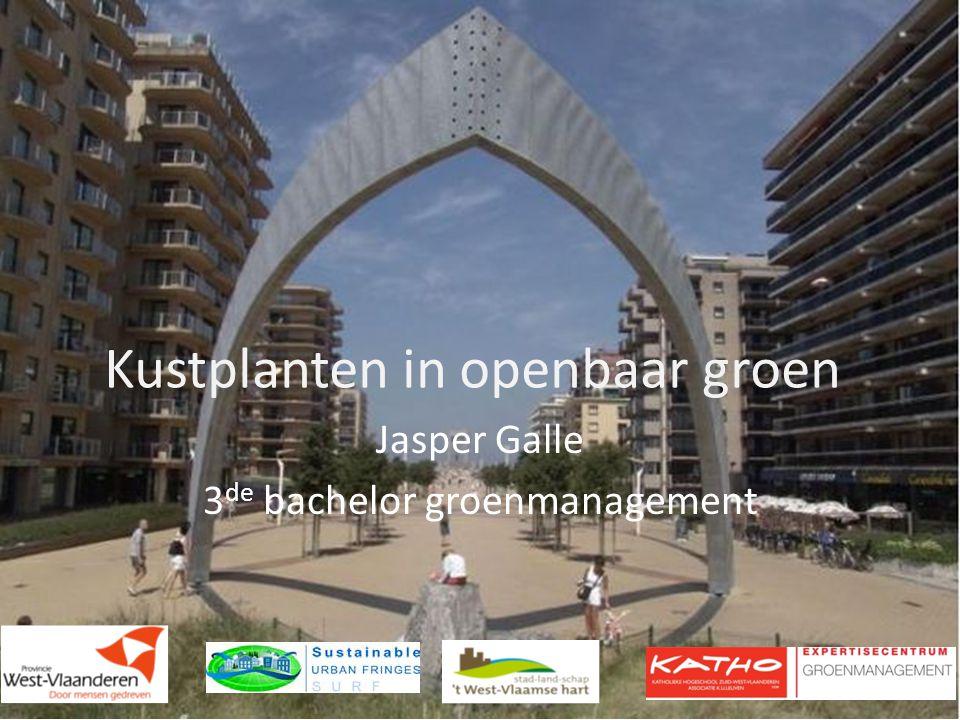 Kustplanten in openbaar groen Jasper Galle 3 de bachelor groenmanagement