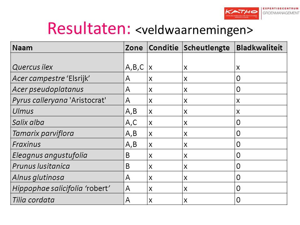 Resultaten: NaamZoneConditieScheutlengteBladkwaliteit Quercus ilexA,B,Cxxx Acer campestre 'Elsrijk'Axx0 Acer pseudoplatanusAxx0 Pyrus calleryana 'Aris