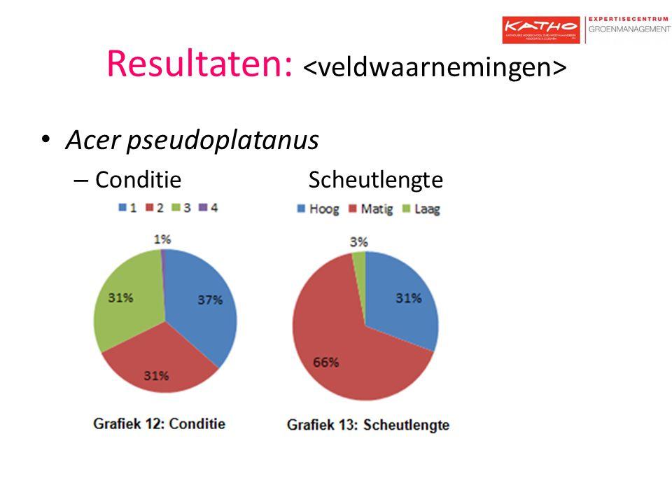 Resultaten: Zone AZone B 1234Aantal N1234 Ulmus New Horizon 73%23%5%0%220% 0 Ulmus Columella 69%26%3% 350% 0 Ulmus Lobel 38%49%13%0%390% 0 Ulmus glabra0% 078%19%3%0%37 Ulmus hollandica Belgica 44%56%0% 320% 0