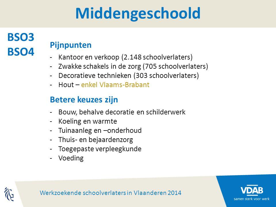 Werkzoekende schoolverlaters in Vlaanderen 2014 Middengeschoold BSO3 BSO4 Pijnpunten -Kantoor en verkoop (2.148 schoolverlaters) -Zwakke schakels in de zorg (705 schoolverlaters) -Decoratieve technieken (303 schoolverlaters) -Hout – enkel Vlaams-Brabant Betere keuzes zijn -Bouw, behalve decoratie en schilderwerk -Koeling en warmte -Tuinaanleg en –onderhoud -Thuis- en bejaardenzorg -Toegepaste verpleegkunde -Voeding