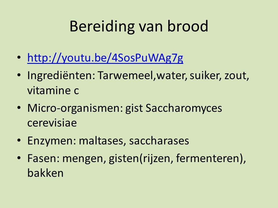 Bereiding van brood http://youtu.be/4SosPuWAg7g Ingrediënten: Tarwemeel,water, suiker, zout, vitamine c Micro-organismen: gist Saccharomyces cerevisiae Enzymen: maltases, saccharases Fasen: mengen, gisten(rijzen, fermenteren), bakken