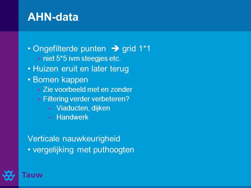 AHN-data Ongefilterde punten  grid 1*1 niet 5*5 ivm steegjes etc. Huizen eruit en later terug Bomen kappen Zie voorbeeld met en zonder Filtering verd