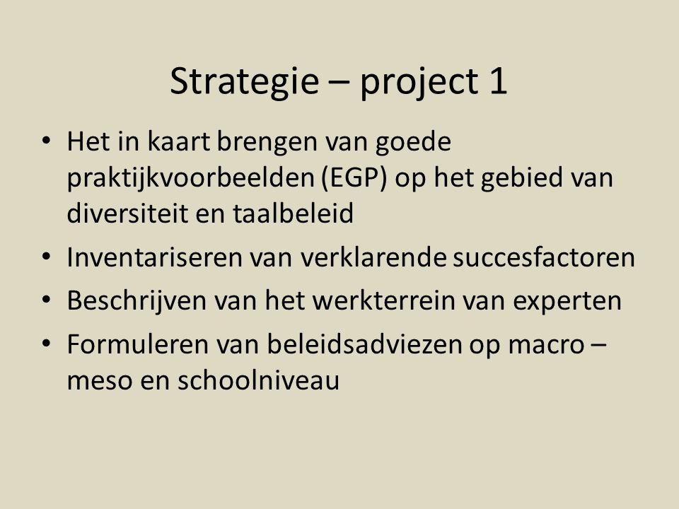 Strategie – project 1 Het in kaart brengen van goede praktijkvoorbeelden (EGP) op het gebied van diversiteit en taalbeleid Inventariseren van verklarende succesfactoren Beschrijven van het werkterrein van experten Formuleren van beleidsadviezen op macro – meso en schoolniveau