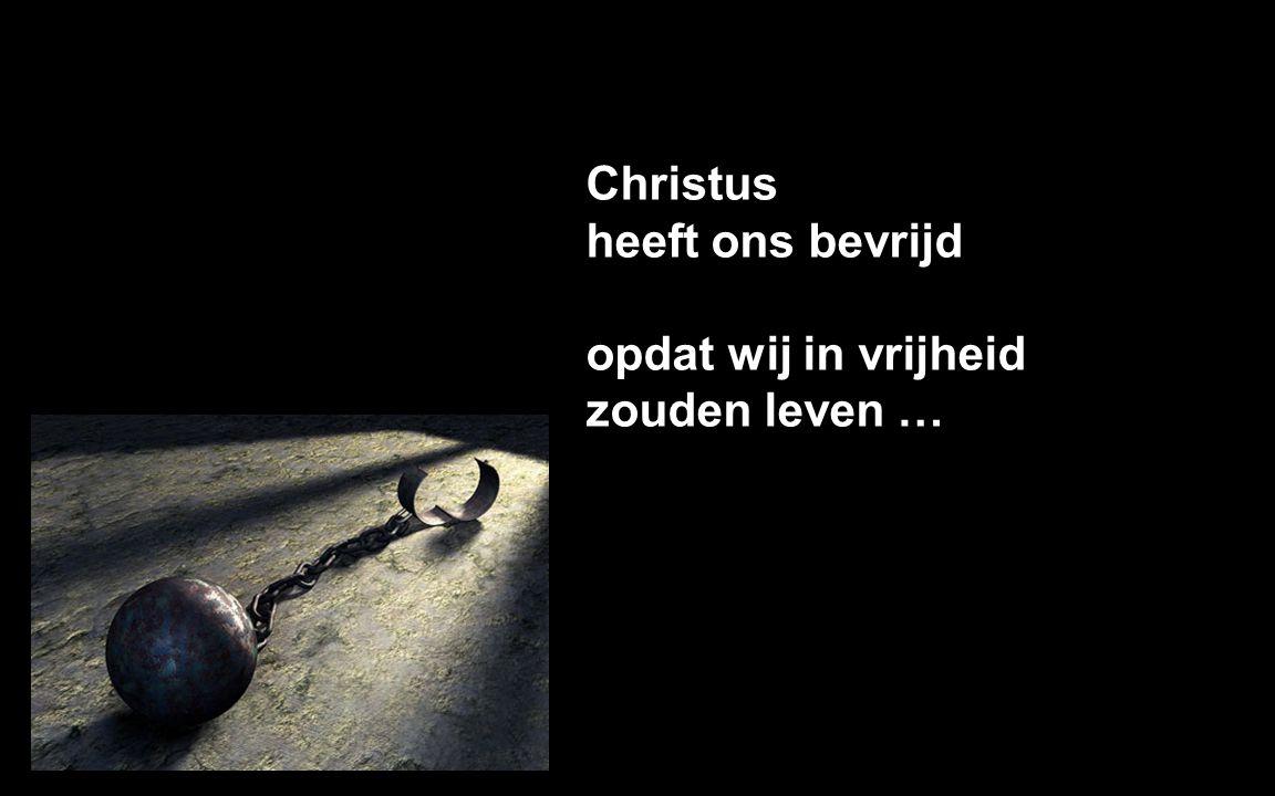 Christus heeft ons bevrijd opdat wij in vrijheid zouden leven …