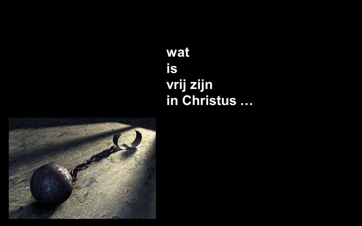 wat is vrij zijn in Christus …