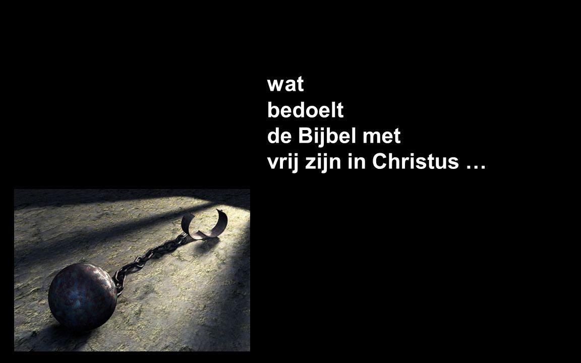 wat bedoelt de Bijbel met vrij zijn in Christus …