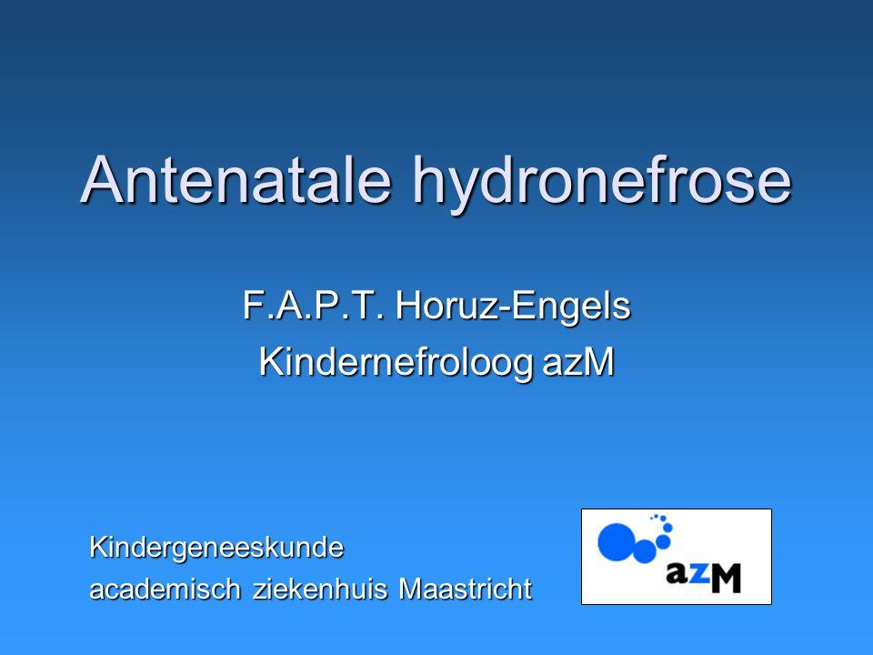 Antenatale hydronefrose F.A.P.T. Horuz-Engels Kindernefroloog azM Kindergeneeskunde academisch ziekenhuis Maastricht