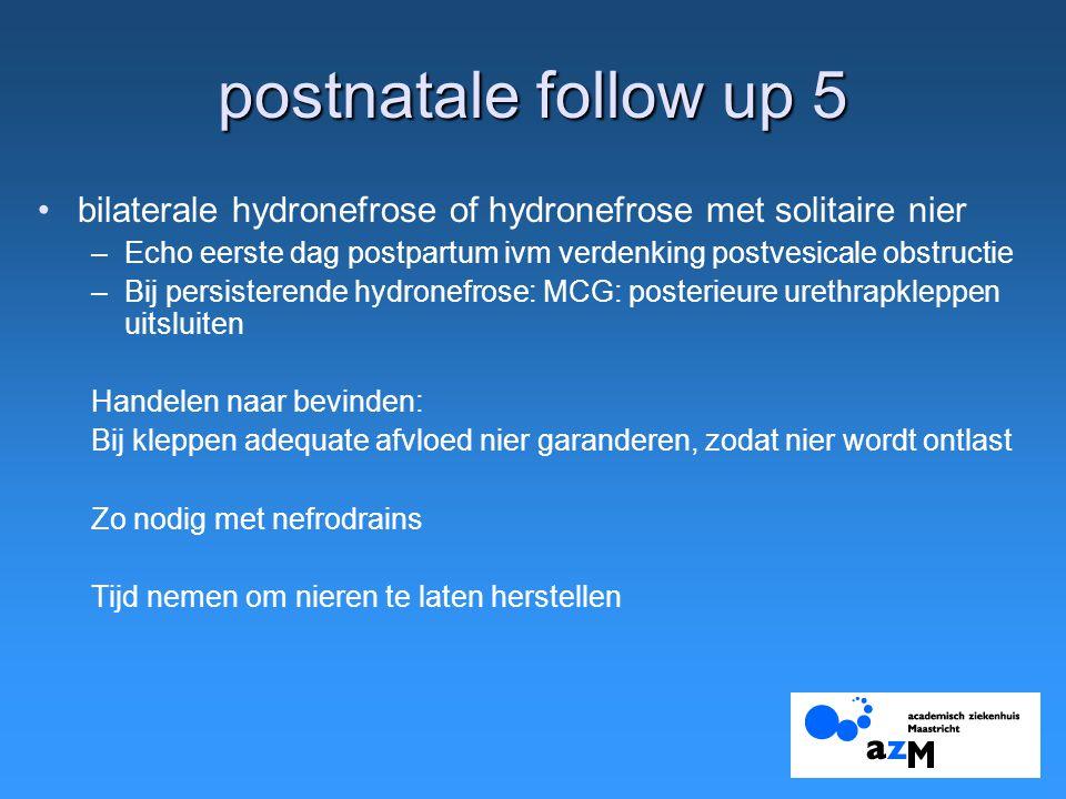 postnatale follow up 5 bilaterale hydronefrose of hydronefrose met solitaire nier –Echo eerste dag postpartum ivm verdenking postvesicale obstructie –
