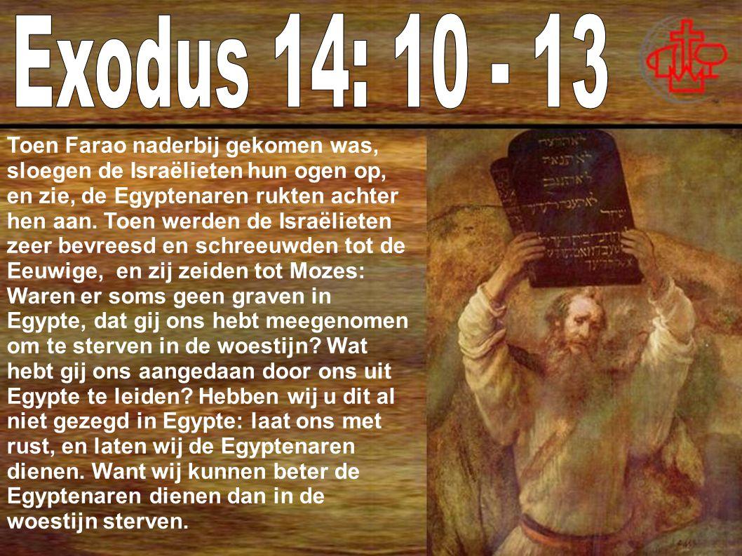 Toen Farao naderbij gekomen was, sloegen de Israëlieten hun ogen op, en zie, de Egyptenaren rukten achter hen aan.