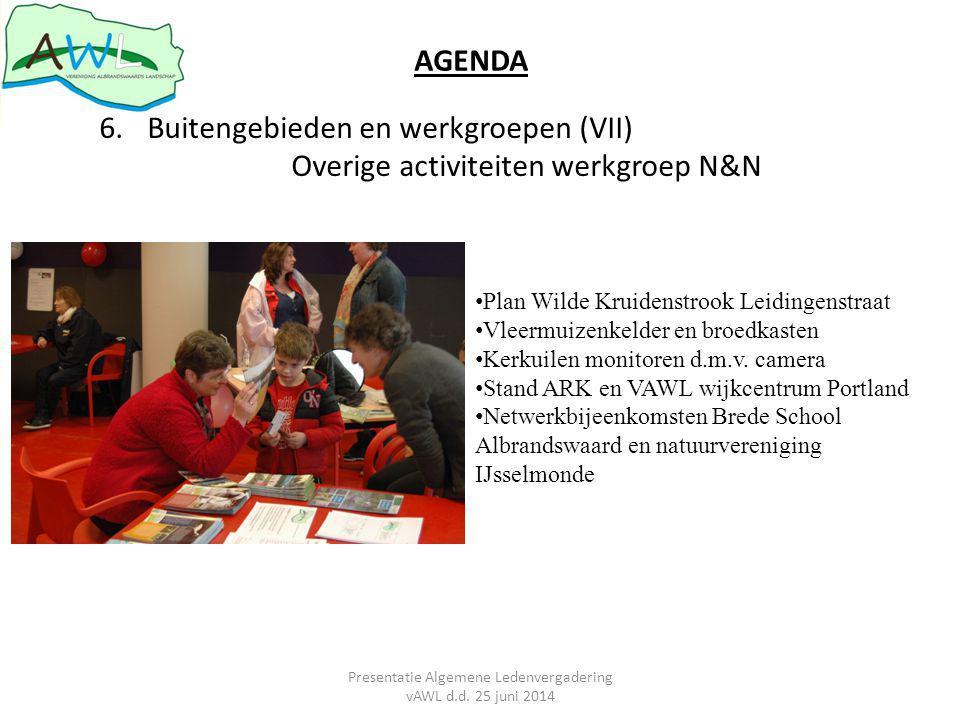 AGENDA 6.Buitengebieden en werkgroepen (VII) Overige activiteiten werkgroep N&N Plan Wilde Kruidenstrook Leidingenstraat Vleermuizenkelder en broedkasten Kerkuilen monitoren d.m.v.