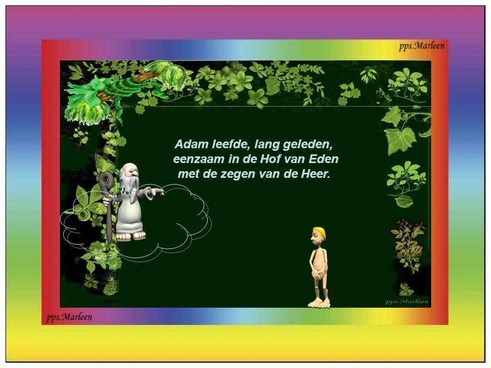 Adam leefde, lang geleden, eenzaam in de Hof van Eden met de zegen van de Heer.