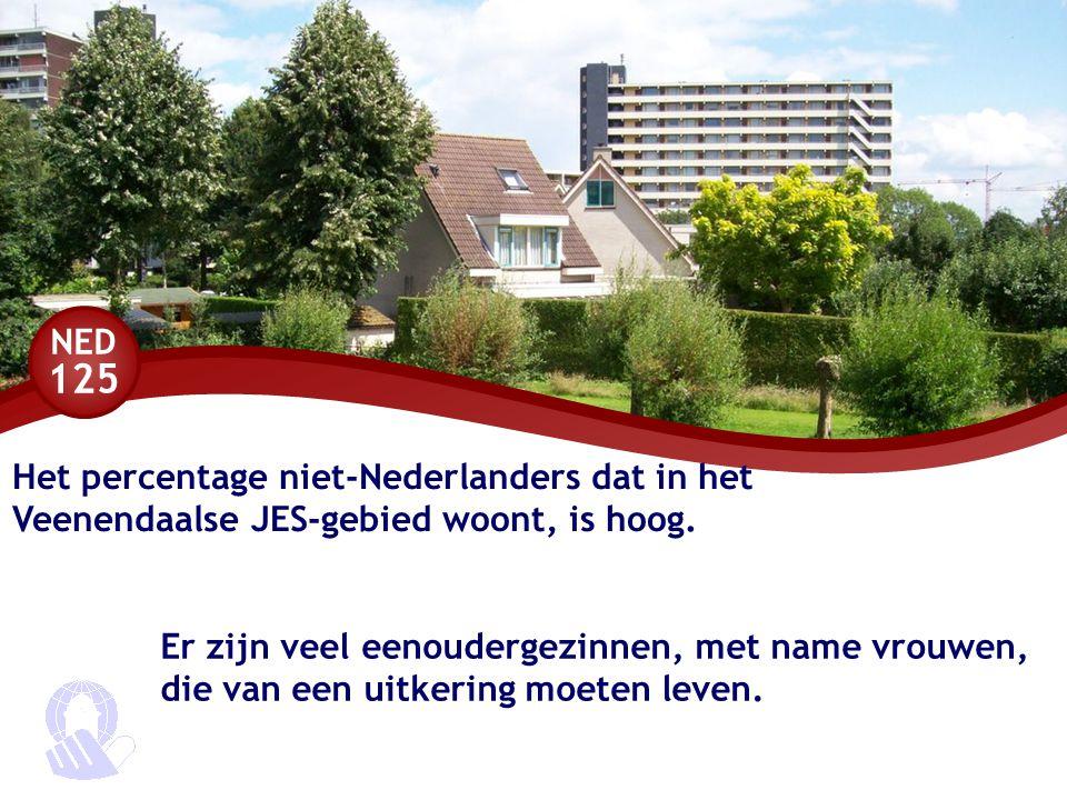 NED 125 Het percentage niet-Nederlanders dat in het Veenendaalse JES-gebied woont, is hoog.