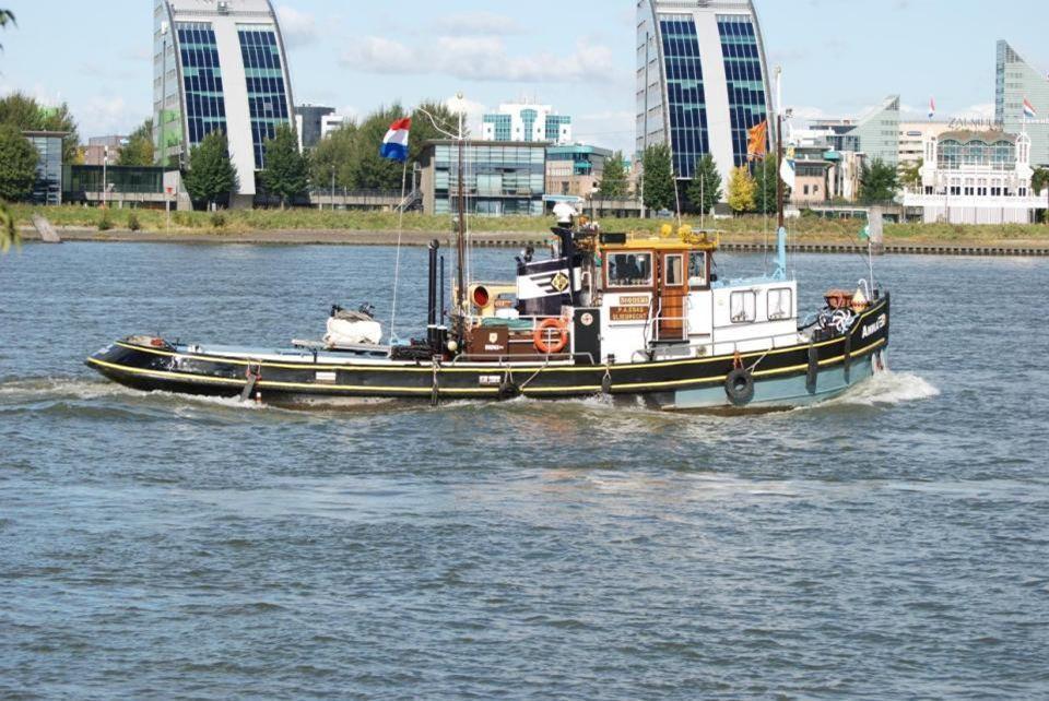 Een open gedeelte van het eiland, de eend zwemt in de Nieuwe Maas