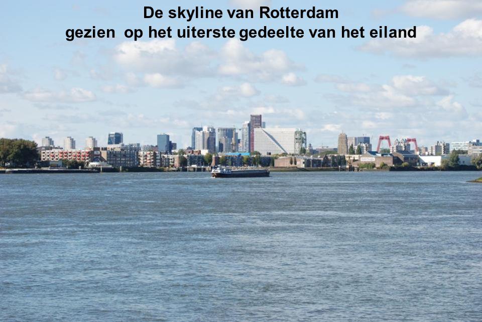Vanaf het eiland zie je De Rotterdam in aanbouw