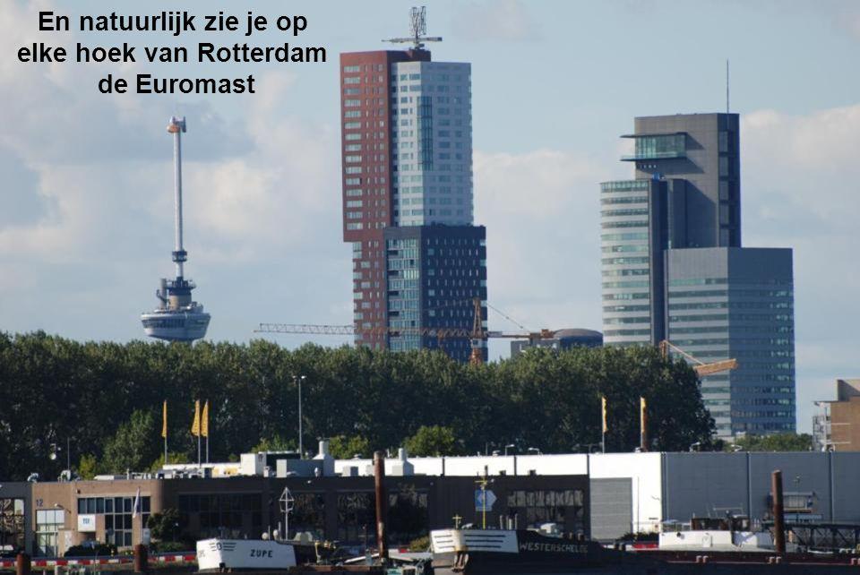 De skyline van Rotterdam gezien op het uiterste gedeelte van het eiland