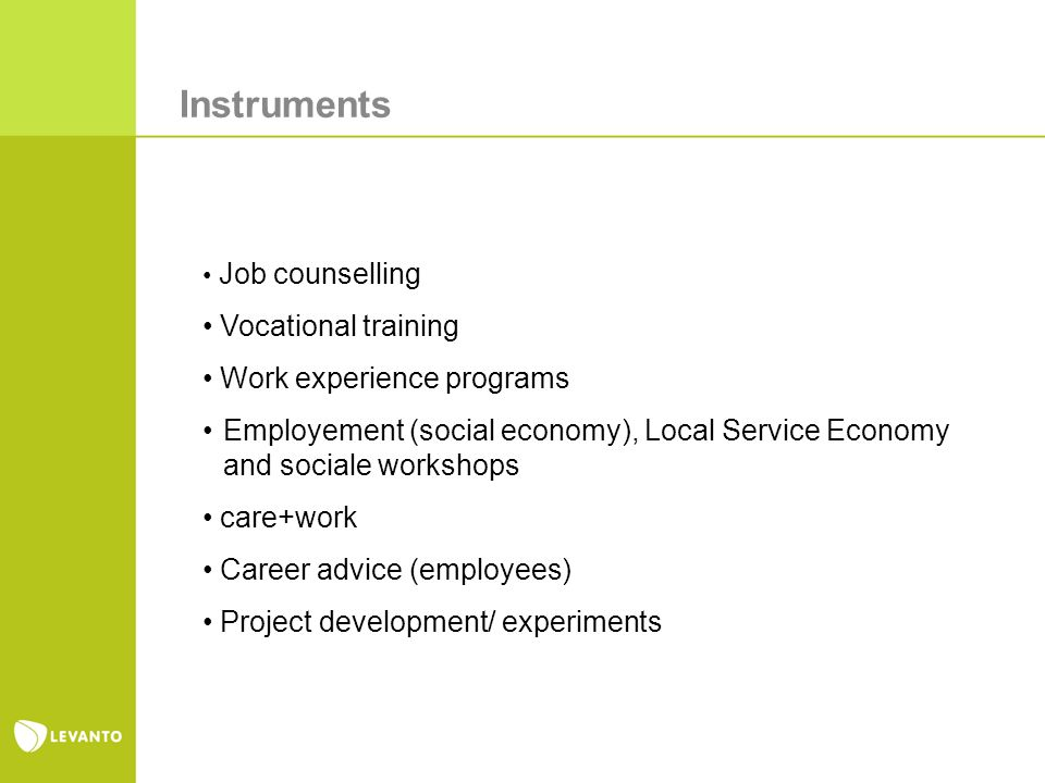 Instruments Job counselling Vocational training Work experience programs Employement (social economy), Local Service Economy and sociale workshops care+work Career advice (employees) Project development/ experiments