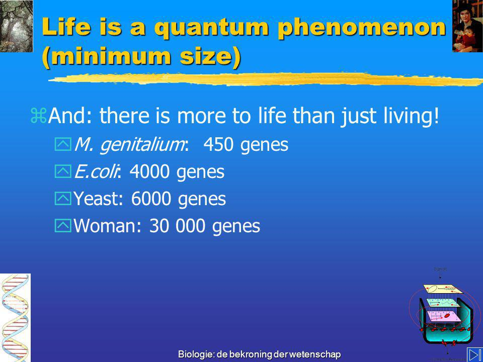 Biologie: de bekroning der wetenschap How many genes are necessary for life 300