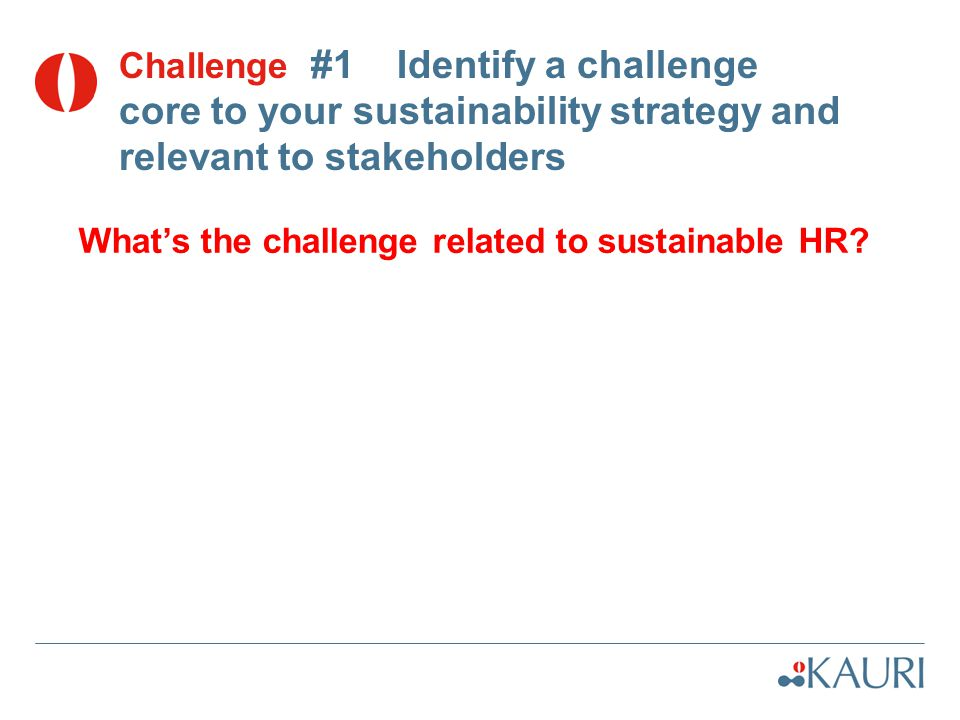 Challenge #1 Identify a challenge core to your sustainability strategy and relevant to stakeholders What's the challenge related to sustainable HR