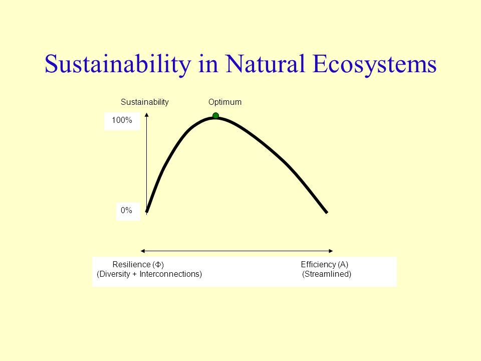 Sustainability in Natural Ecosystems Resilience (  Efficiency (A) (Diversity + Interconnections) (Streamlined) Sustainability Optimum 0% 100%