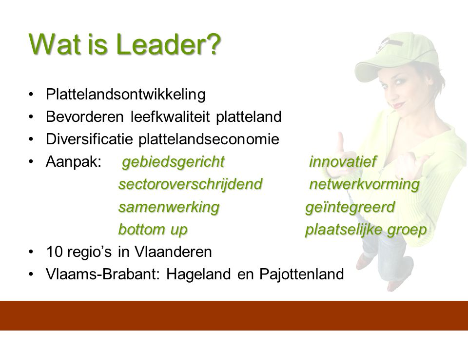 Wat is Leader.